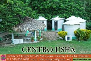 usha village 48